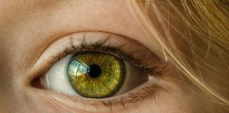 14-eyes