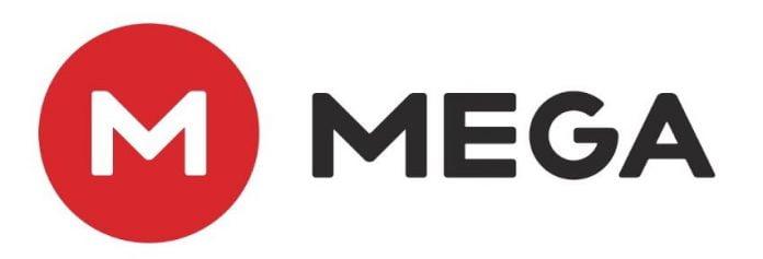 Mega kim dotcom e1546043739730