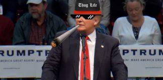 trump-twitter-1