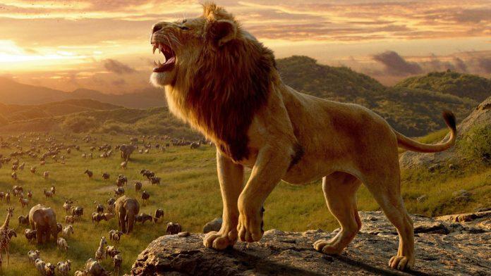 lion-king-framsida