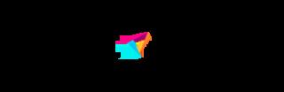 perfect-privacy-logo